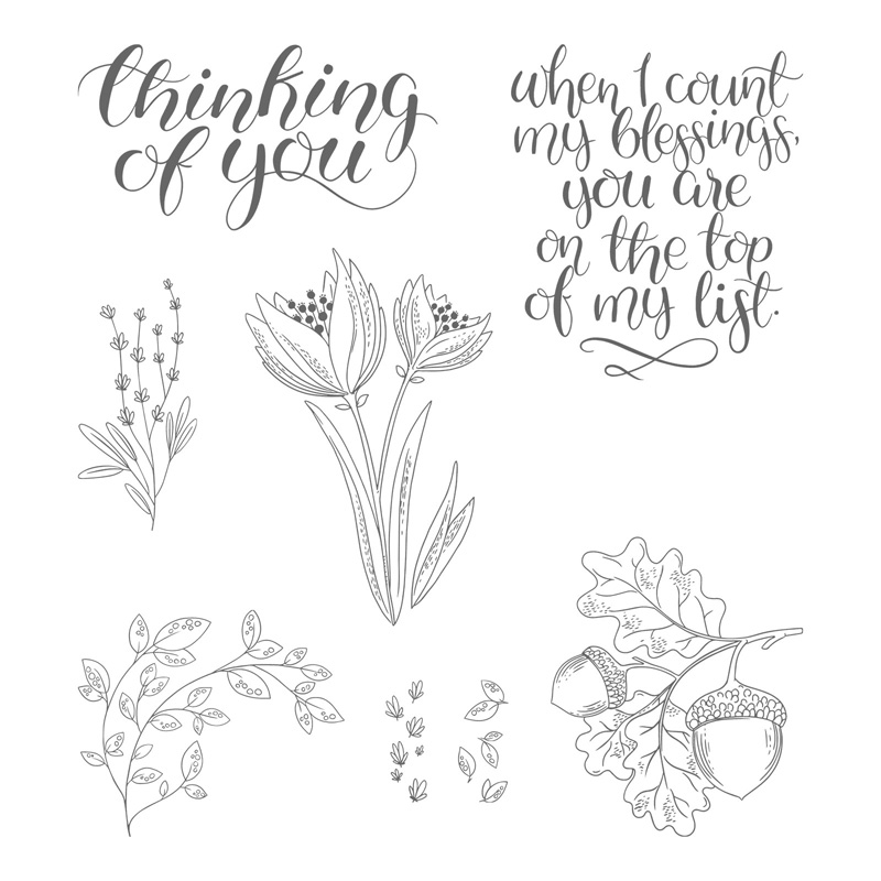Counting My Blessings With Stampin' Up! Stamp Sets